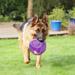 Image 3 - Jeu KongJumbler Ball en élastomère pour chien