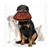Image 3 - Jouet pour chien très résistant méga Oddball motifs brique Tuffy