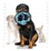 Image 2 - Jouet très résistant pour chien 3 anneaux motif camouflage Tuffy