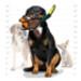 Image 3 - Jouet très résistant pour chien forme canard Tuffy Duck