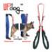Image 1 - Laisse baudrier Updog™ soutien à la mobilité du chien