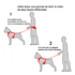 Image 2 - Laisse pour canicross avec amortisseur Tubucross pour chien de moyenne et grande taille