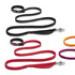 Image 1 - Laisse ceinture extensible Roamer pour chien Ruffwear