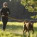Image 9 - Laisse ceinture extensible Roamer pour chien Ruffwear