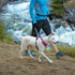 Image 13 - Laisse ceinture extensible Roamer pour chien Ruffwear
