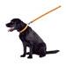 Image 2 - Laisse pour chien en cuir bombé