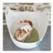 Image 5 - Litière écologique pour chat au tofu K-Litter