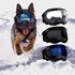 Image 9 - Lunette masque oculaire thérapeutique pour chien Rex-Specs K9