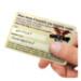 Image 5 - Médaille intelligente gravée QR code d'identité pour chien et chat