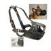 Image 4 - Muselière chien de frappe standard