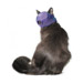 Image 4 - Muselière de contention Mus-cat™ pour chat