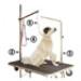 Image 3 - Potence pour table de toilettage animaux 1 point d'attache