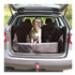 Image 2 - Protection de coffre automobile Bachousse™ pour chien