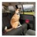 Image 2 - Protection de porte intérieure de voiture pour chien Door Guard
