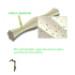 Image 4 - Prozym RF2 Stick dentaire pour chien