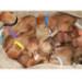 Image 6 - Pupcolors collier d'identification scratch pour chiot et chaton