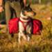 Image 6 - Sac de bât Palisades Pack Ruffwear pour chien