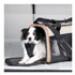 Image 4 - Sac de transport pour chien Wander Carrier