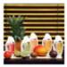 Image 2 - Shampoing pour pelage rêche et abîmé Activ fruit à la mangue pour chien