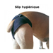 Image 1 - Slip hygiénique pour chaleur des chiennes