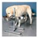 Image 4 - Support gamelle réglable en hauteur Luxe