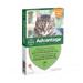 Image 1 - Traitement anti-puces pour chat Advantage