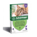 Image 4 - Traitement anti-puces pour chat Advantage