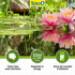 Image 8 - Traitement de l'eau Tetra Pond AlgoRem pour poissons de bassin