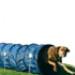 Image 2 - Tunnel d'agility pour chiots et petits chiens