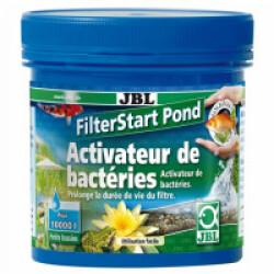 Activateur de bactéries JBL FilterStart Pond pour bassin 250 g