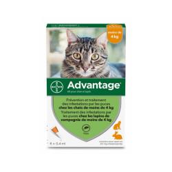 Advantage 40 Anti-puces pour chats < 4 kg Boîte 6 Pipettes