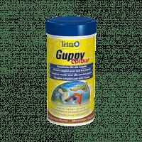 Alimentation Tetra Guppy colour 250 ml pour poissons