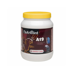 Aliments NutriBird A19 Versele Laga pour aras, eclectus et perroquets
