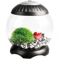 Aquarium Nano Sphere 5 litres Flamingo