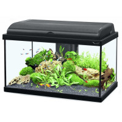 Aquarium Aquadream Aquatlantis Coloris Noir Modèle 80 LED Contenance 79 litres