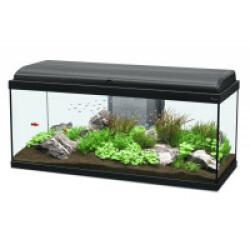 Aquarium Aquadream Aquatlantis Coloris Noir Modèle 100 LED Contenance 100 litres
