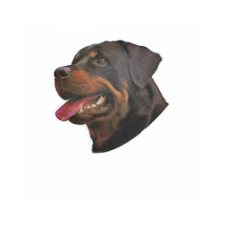 Autocollant race Rottweiler 7 cm - Lot de 4