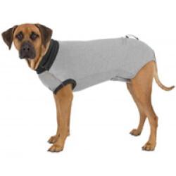 Body de protection gris pour chien Trixie Taille XS