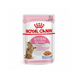 Bouchées Royal Canin Kitten Sterilised en sauce - 12 sachets 85 g