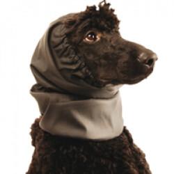 Cache oreilles imperméable pour chien