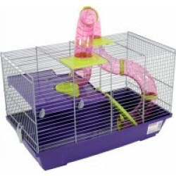 Cage noisette Prestige Violette