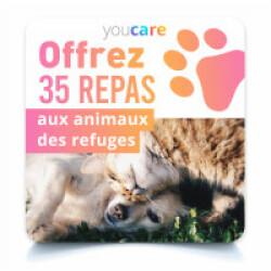 Carte de dons - Offrez 35 repas aux animaux des refuges