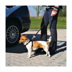 Ceinture de sécurité pour chien Friends on tour Taille S Longueur 30/60 cm (Ex : Westie)