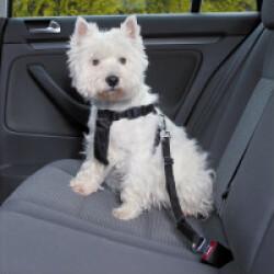 Ceinture de sécurité Friends on tour pour chiens