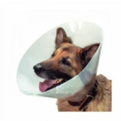 Collerette de protection anti léchage pour chien et chat