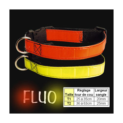 Collier chien fluo T1 Orange