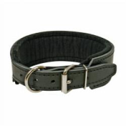 Collier cuir pour chien motivation au mordant 65 cm