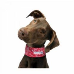 Collier rafraîchissant rouge pour chien Aqua Coolkeeper 22/29 x 2,5 cm