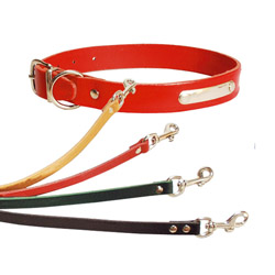Collier chien cuir déco simple T1 Rouge (26 à 31 cm) lg 14 mm