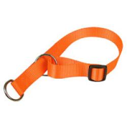 Collier semi-étrangleur pour chien - coloris orange fluo